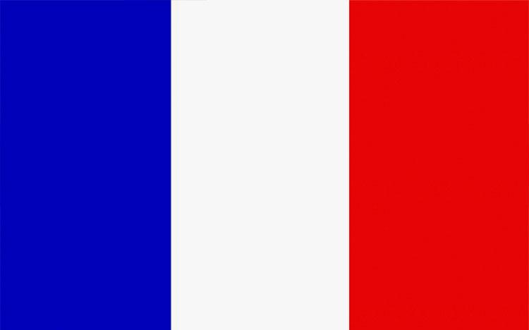 法国探亲访友签证